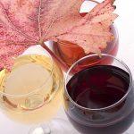 Červené nebo bílé víno, aneb když se dělí vína podle barvy