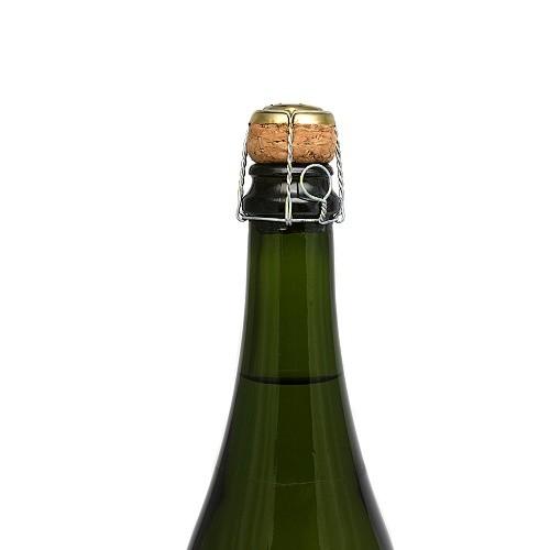 Jak otevřít láhev šumivého vína