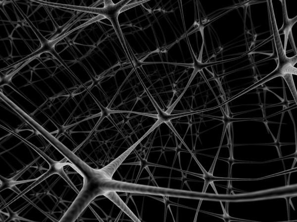 Vliv alkoholu na neurony