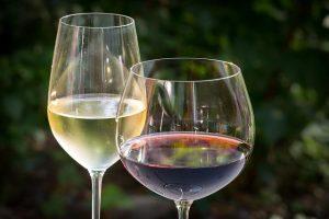 Nejlepší sklenice na víno